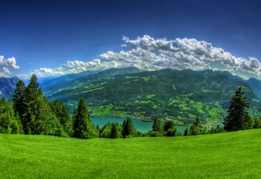 Landscape 2 Alt